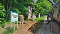 <p> Puščavnik ali eremit je vrsta hrošča, ki živi v duplih starih dreves. Meri od 20 do 35 mm in živi le nekaj tednov. Ličinka se približno tri leta prehranjuje s trohnečim lesom (lesnim muljem).<br> Foto: Saša Vochl </p>