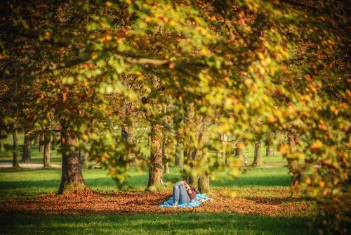 <p>  Sprostitev v parku Tivoli; Foto: Artinfoto.si </p>