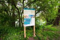 <p>  Učna pot ob Koseškem bajerju; Foto: Artinfoto.si </p>
