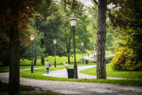 <p>  Naravni spomenik Tivoli - mestni park </p>
